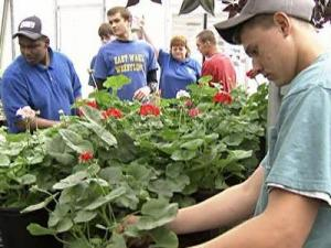 Students nurtured and grown plants for sale.