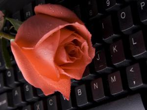Since 2011, the North Carolina Attorney General's office has heard from 70 victims who've lost a total of $3.6 million to online romance scams.