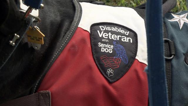 """Service"" dog"