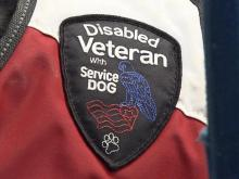 Fake service dogs putting people 'at risk'
