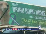 Bobo billboard