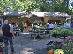 Customers stroll around Homewood Nursery in Raleigh on Saturday, Oct. 8, 2011. Individuals buyers remain a bright spot, although a drop in large-volume orders has dropped overall sales by 20 percent.