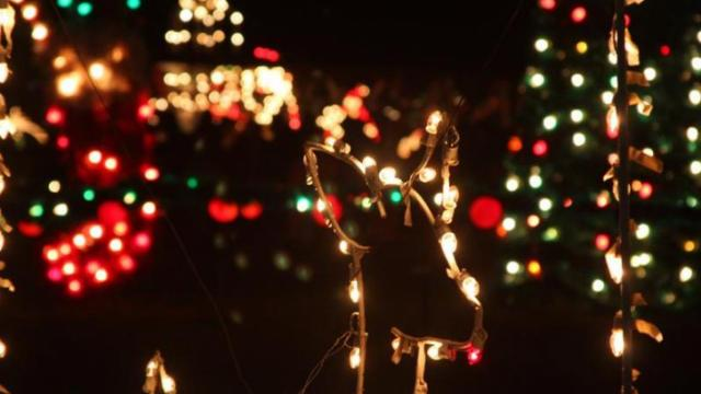 Holiday travelers and locals visit the multi-acre Christmas light display off of N.C. 50 near Benson every year.