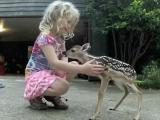What's Trending: Fawn fond of Raleigh girl