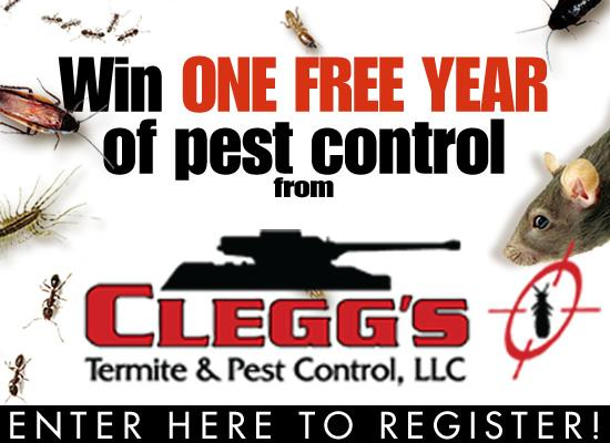 Clegg's Termite and Pest Control Giveaway - Splash Image