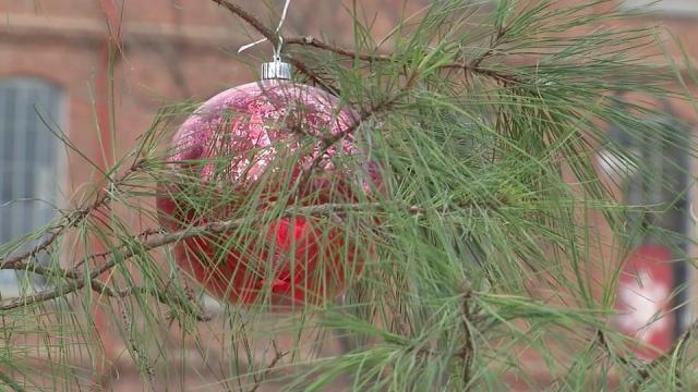 Nonprofits benefit from tree challenge