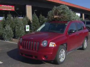 NC Christmas tree sales
