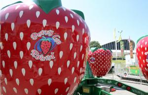 One of the many rides for the youngsters, berry-go-round