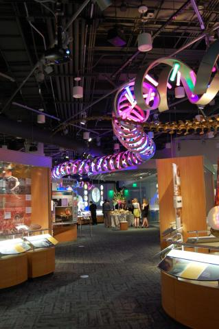 Guests got a sneak peek of the Nature Research Center during a special gala and after-party on April 13, 2012.