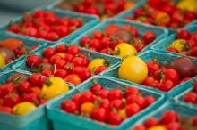 Midtown_Farmers_Market-19