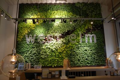 National home furnishings retailer West Elm is holding a grand opening for its latest location, at Southpoint Mall in Durham, on Thursday. Nature is a big inspiration in their products so as you enter the first thing you will see is their living green wall.