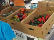 A look at the Westeran Wake Farmers Market.