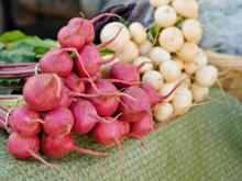 Midtown_Farmers_Market_40