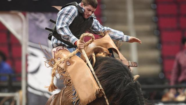 Championship saddle bronc riding. World's Toughest Rodeo comes to the PNC Arena on Friday January 17, 2014. Featuring many local riders and Whiplash the Cowboy Monkey. (Chris Baird / WRAL Contributor).