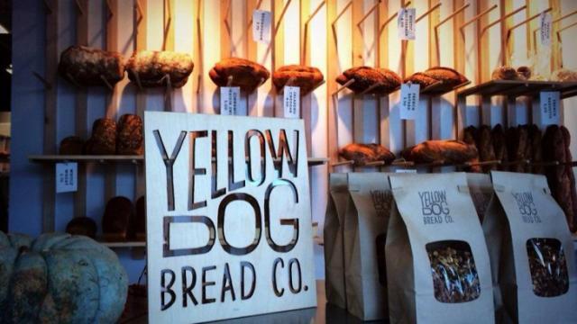 Yellow Dog Bread Co