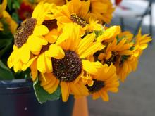Crafters, farmers and shoppers converge at North Hills for the weekly  Midtown Farmers' Market.