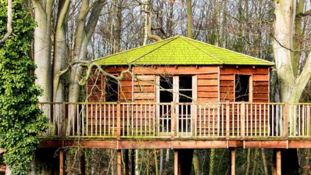 Treehouse (Image from Downtown Raleigh Home Show)