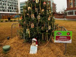 This tree from the Coalition to Unchain Dogs took home the $5,000 first place prize in the Triangle Tree Challenge.