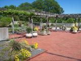 JP Raulston Arboretum