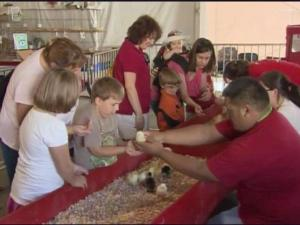 It will be hands-off this year at the NC State Fair.