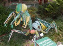 Down by the pond there lurks a giant praying mantis, the creation of Joe Carnevale.