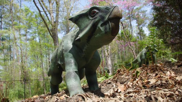 New dinos hit the trail at the Museum of Life and Science