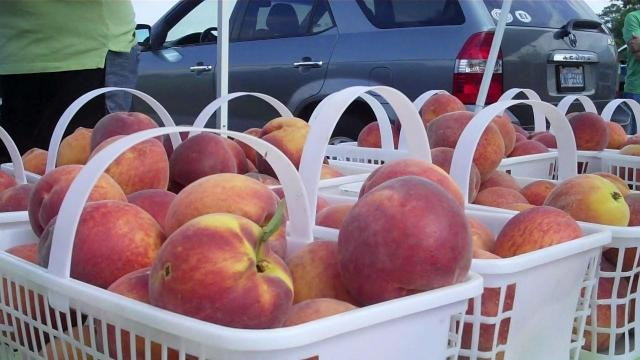 Peaches at the Western Wake Farmers Market in Cary.