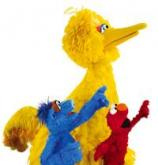 Big Bird, Elmo and Hu Hu Zhu star in a new show at Morehead Planetarium