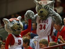 Mr. and Mrs. Wuf at an N.C. State women&#039;s basketball game
