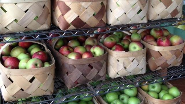 Apples at the N.C. Farmers' Market