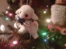 One of the many lambs adorning Amanda Lamb's Christmas tree. They were collected by her mother.