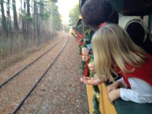New Hope Valley Santa Train