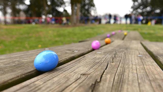 Plastic eggs sit on a picnic table prior to the start of the Pullen Park Egg Hunt Saturday, Mar. 23, 2013.  The annual event is held for children ages 10 and under with the eggs containing healthy snacks and other prizes.  (Photo by Jeffrey A. Camarati)