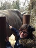 Amanda Lamb's daughter brushes a rhino