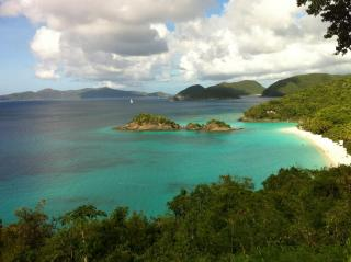 A hiker's view of St. John's Trunk Bay. Gorgeous, sure. But would the kids be happier in Myrtle Beach? Courtesy Billy Warden