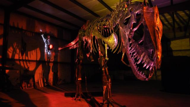 Dinosaurs in Motion opens at the N.C. Museum of Natural Sciences on May 18.