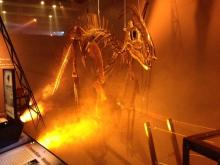 Dinosaurs in Motion exhibit at the N.C. Museum of Natural Sciences