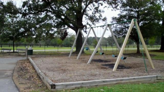 Swings at Centennial Park, Garner