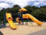 Spring Forest Road Park