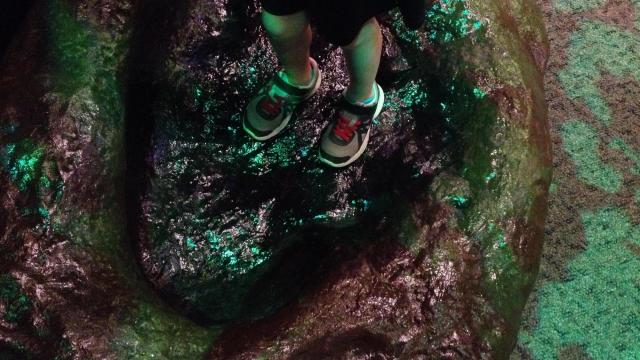 Standing in the footprint of a dinosaur.