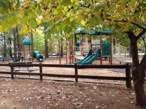 Playground at Harris Lake County Park