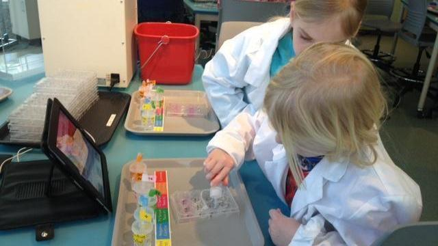 Micro World Investigate Lab at the Nature Research Center