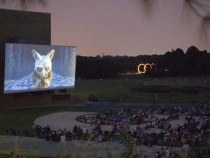 Outdoor movies at the N.C. Museum of Art