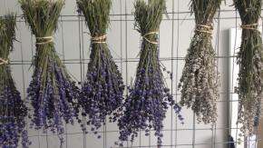 Mezza Luna Lavender Farm