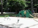 R.S. Dunham Park, Cary