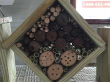 Bee Box by STEMplay