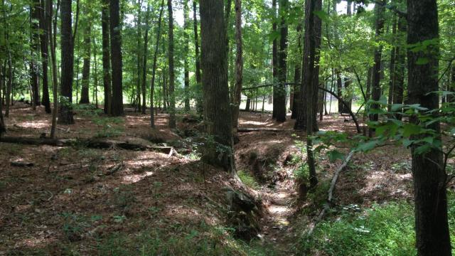 Duck Cove Trail at Beaverdam Recreation Area