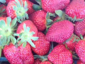 The farm features a farm stand, pick-your-own strawberry fields and homemade ice cream.