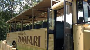 Zoofari at the N.C. Zoo