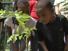 Children learn about gardening at the Mayview community garden in Raleigh.